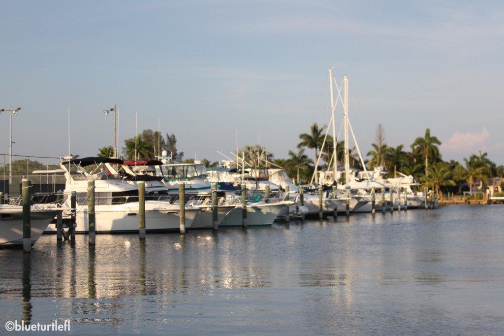 A view of the Cape Coral Yacht Basin