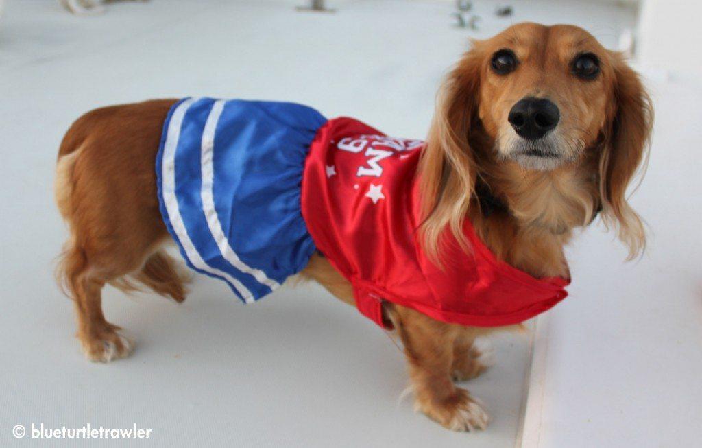 Sophie as a little cheerleader - GO TEAM K-9!