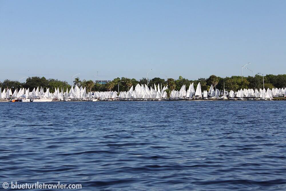 The shoreline was filled with tiny sails