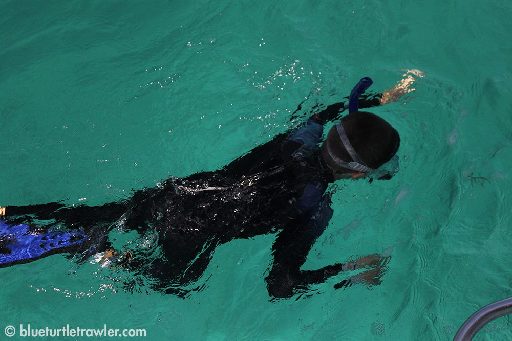 Corey snorkeling