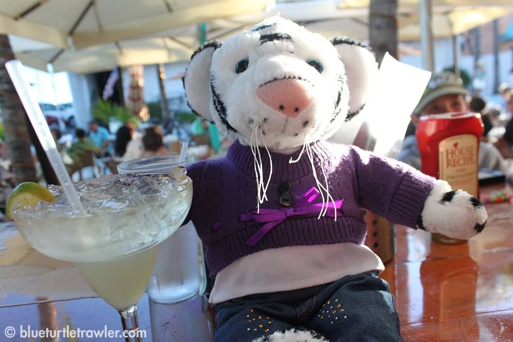 Even Maddie's new bear likes the margaritas