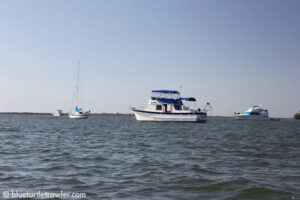 Blue Turtle, Florever Young and Royal Tease at Merwin Key