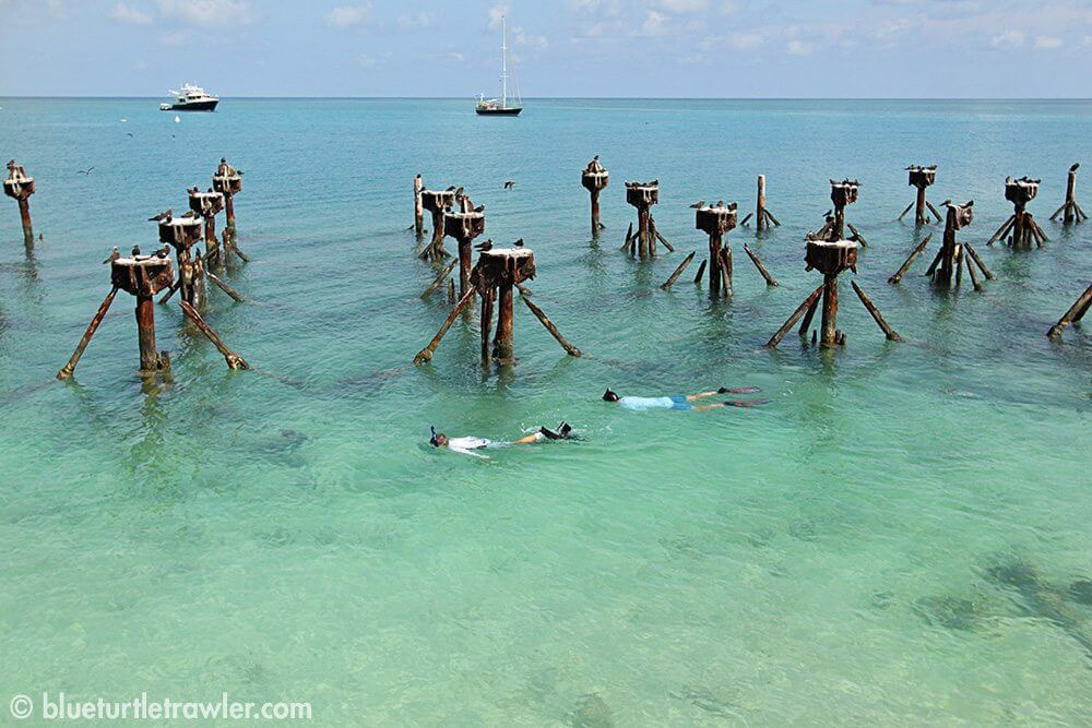 Randy and Corey snorkeling by the old docks
