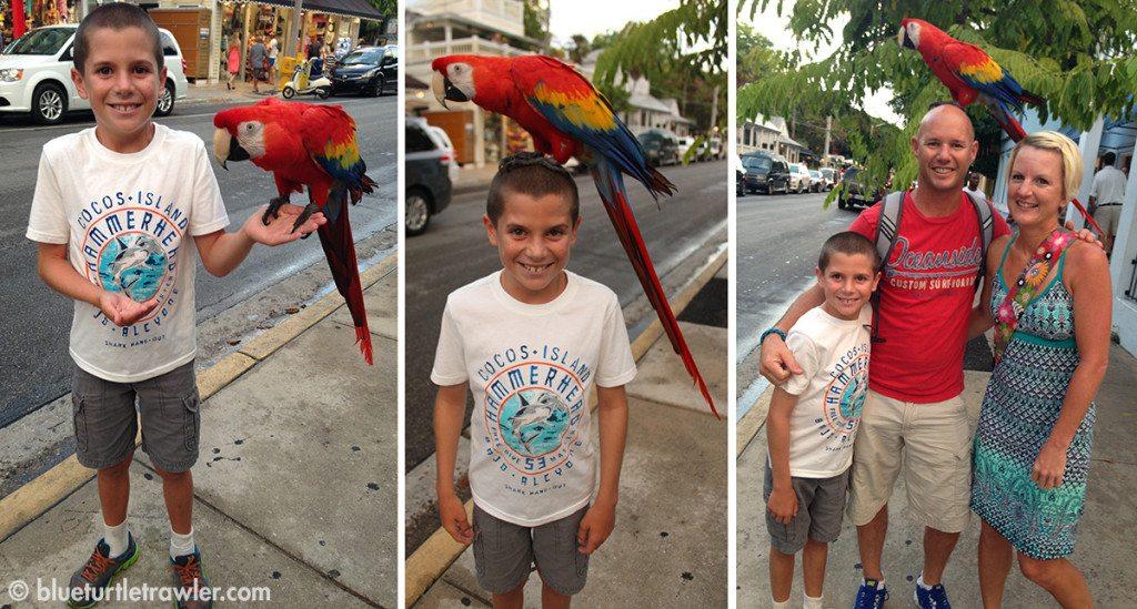 Corey gets his photo taken with a parrot (sorry Tiki!)