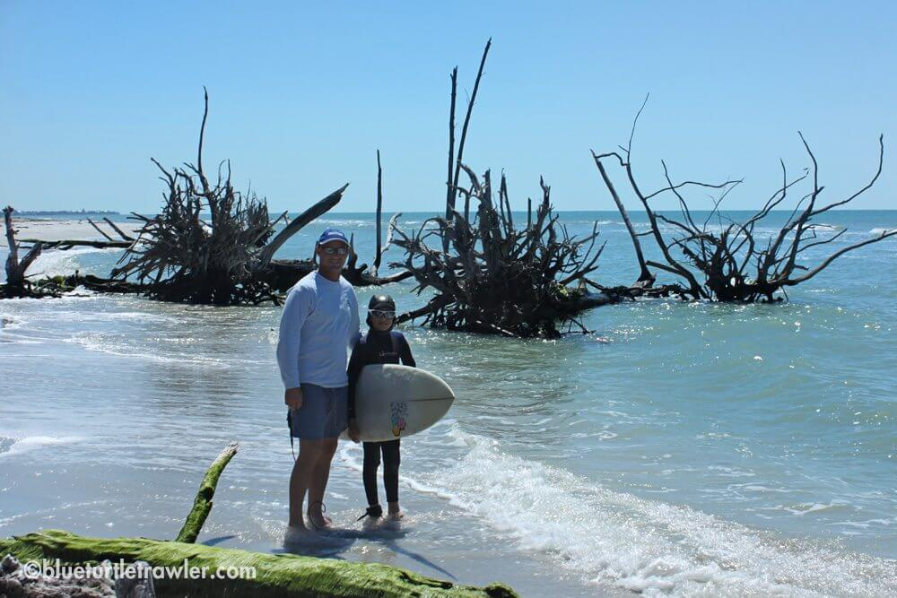Walking the beach and checking out the fallen trees