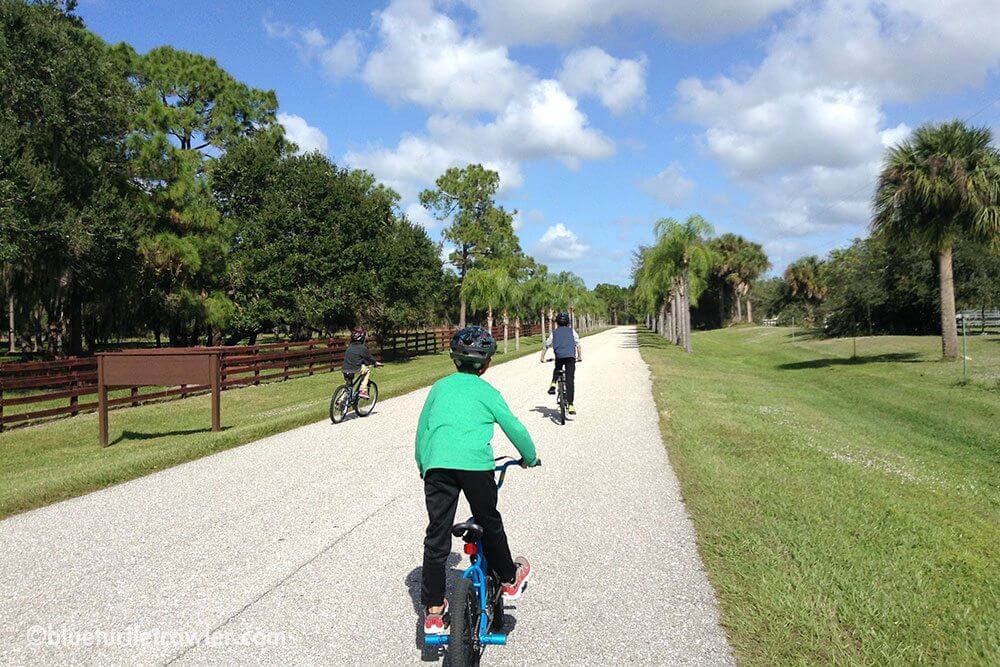 The boys went on a bike ride while Aunt Kim ran