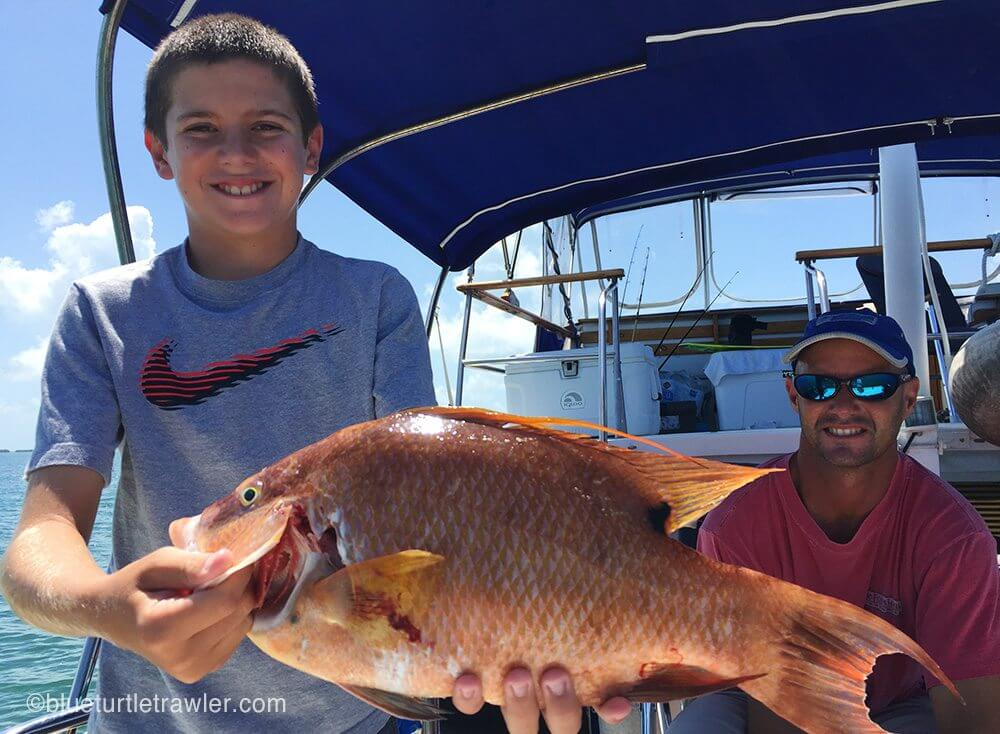 A large hogfish that Randy speared
