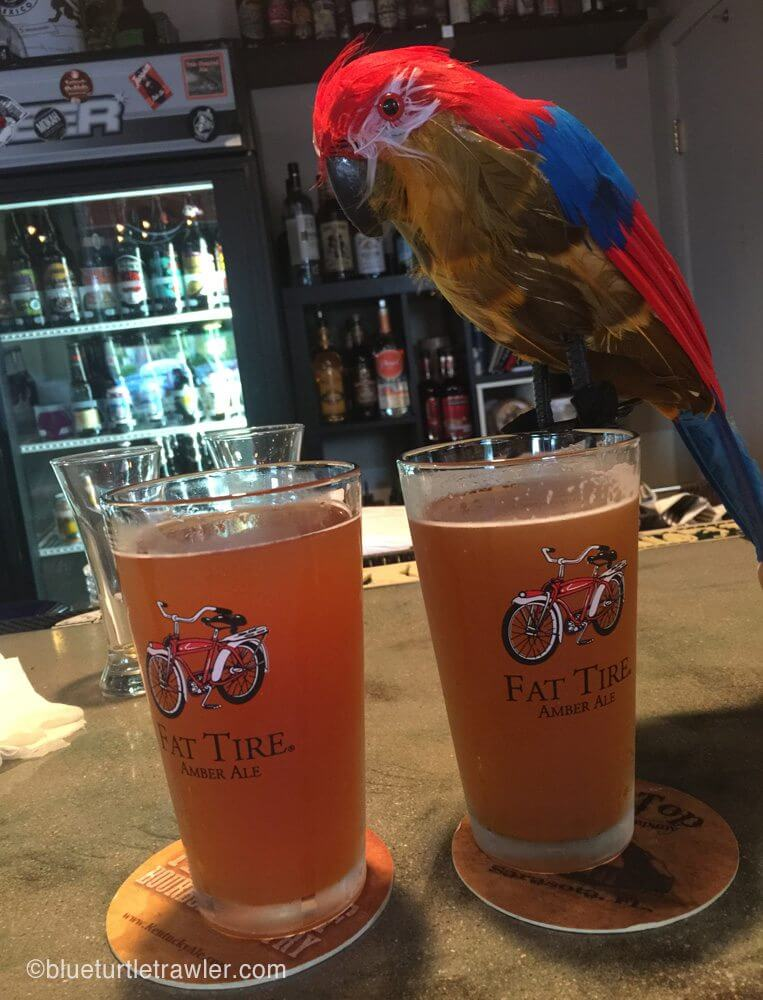 "Even ""Tiki"" gets to enjoy a good brew at House of Brewz"