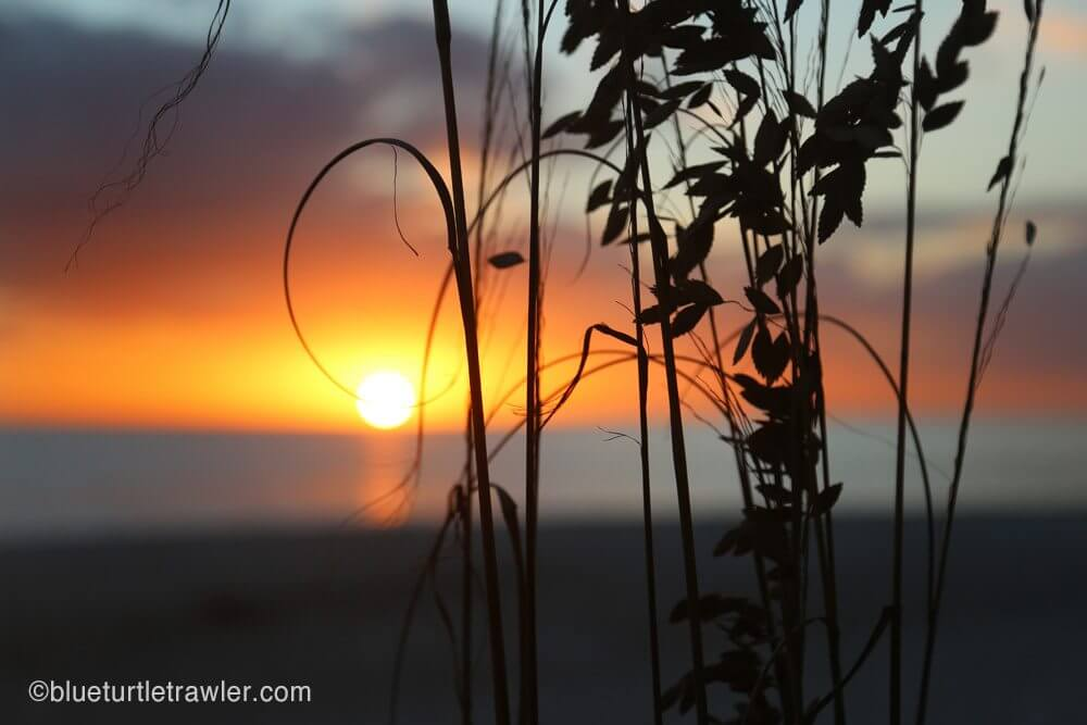 Sea oats and an amazing sunset