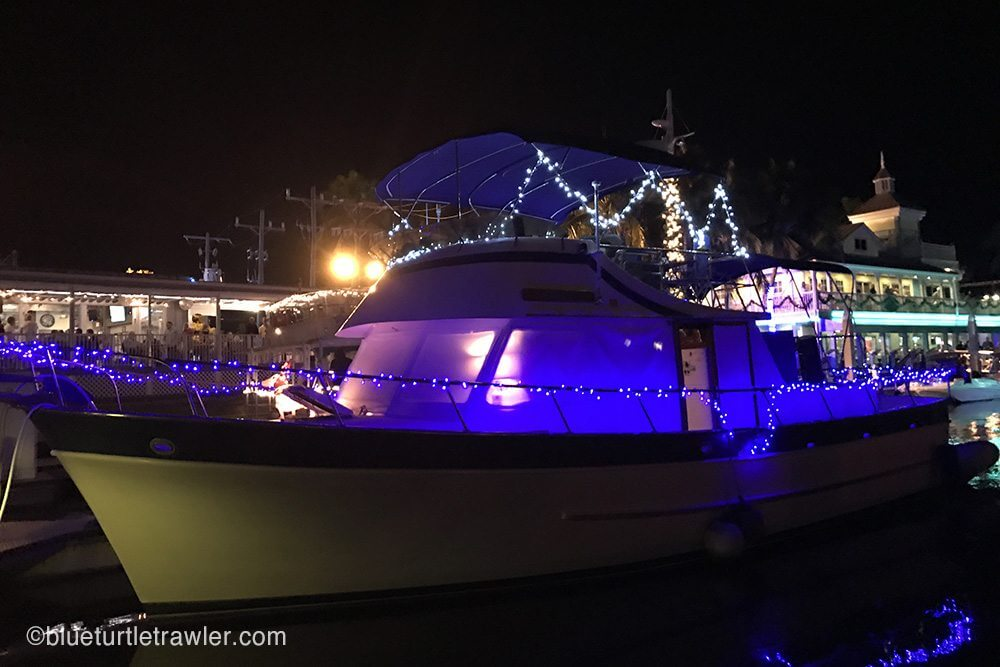 Blue Turtle with her lights on