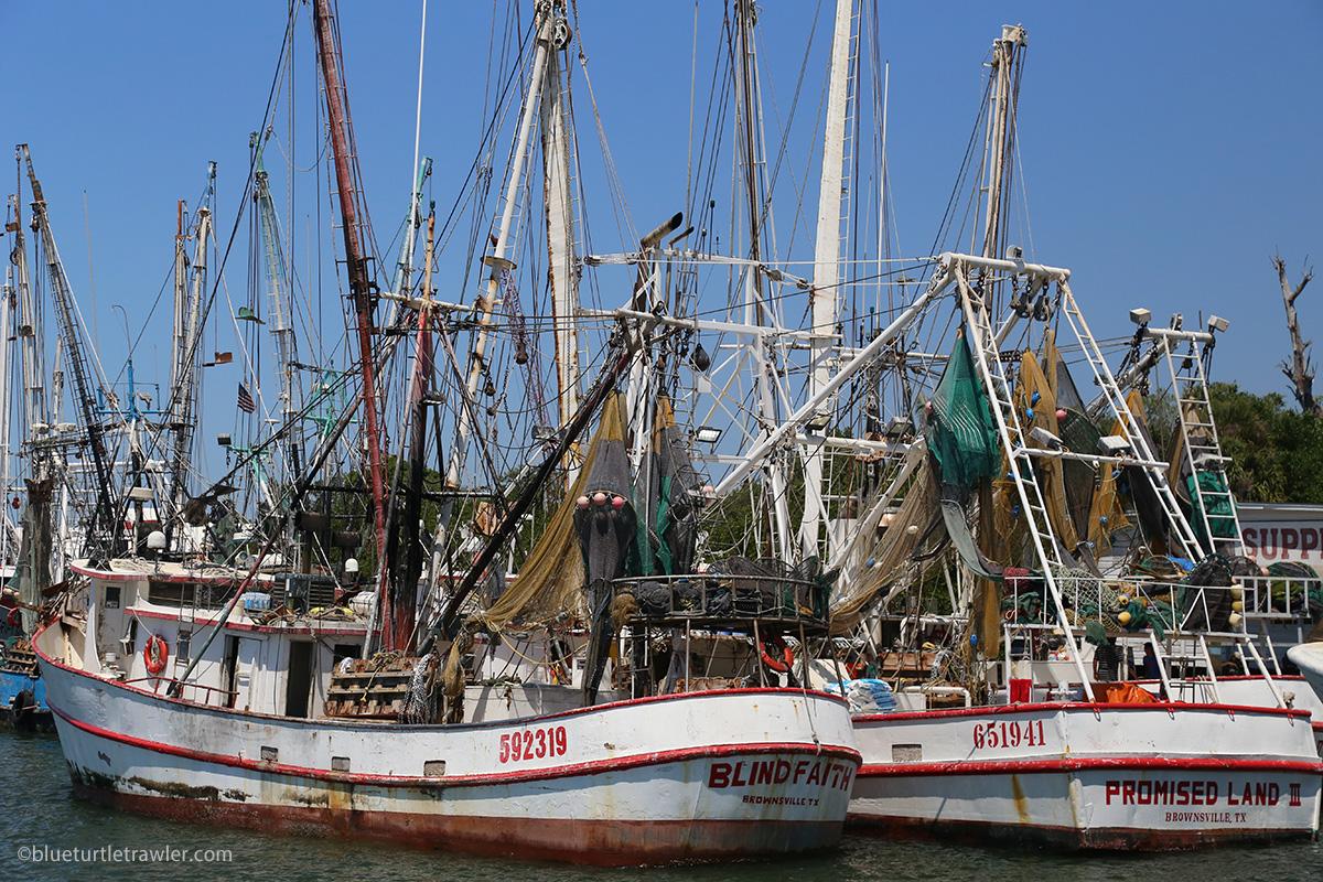 FMB shrimp fleet