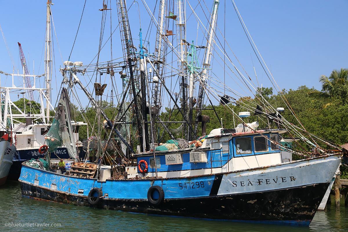fort myers beach shrimp fleet