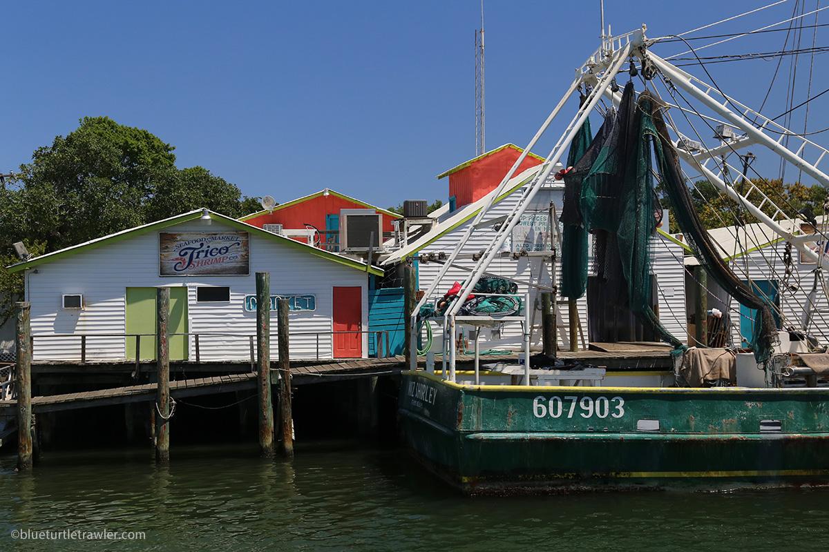 trico shrimp co seafood market